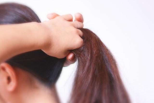 ポニーテール 頭皮 髪の毛