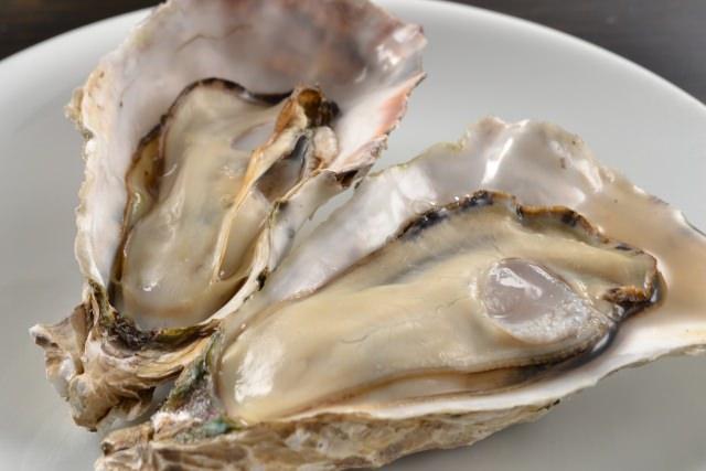 牡蠣 生食用 加熱用