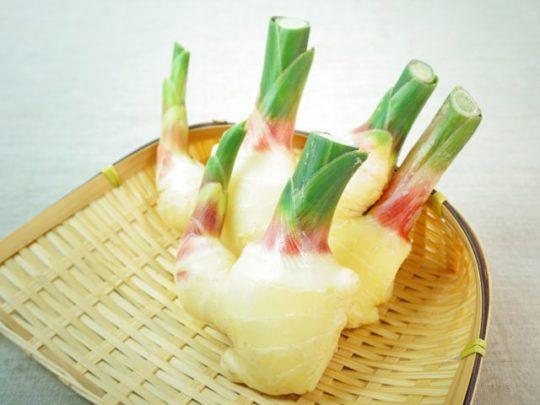 生姜 食べ過ぎ
